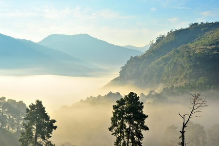 morning mist on doi angkhang mountain, Chiang Mai, Thailand  Stock Photo - 18565207