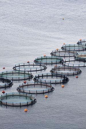 Aquaculture Stock fotó - 7548658