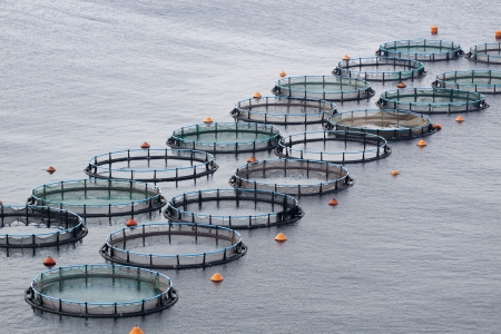 farm structures: Aquaculture