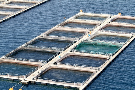 Fish farms in Peloponesse, Greece
