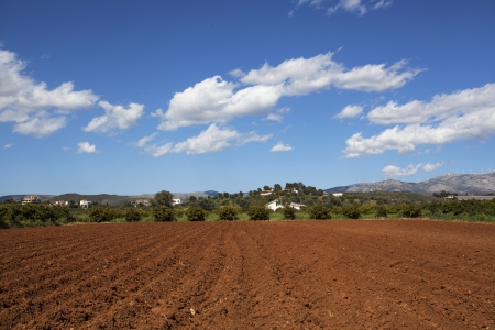 Plough soil rows at cultivated field