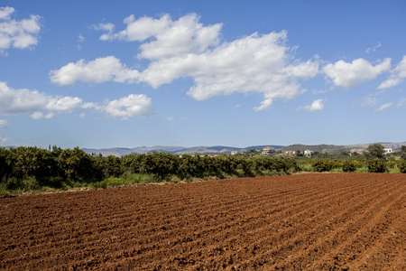 plough: Plough soil rows at cultivated field