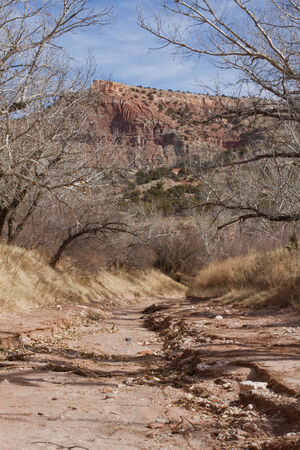 duro: DRIED UP CREEK BED IN PALO DURO CANYON