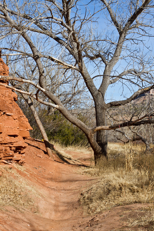 duro: SUNFLOWER TRAIL in PALO DURO CANYON Stock Photo