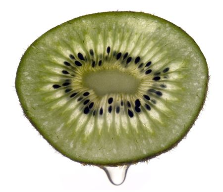 actinidia deliciosa: Thin slice of Kiwi (the fruit of Actinidia deliciosa) with a drop of juice.