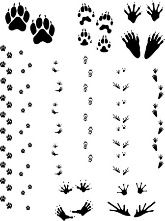 Paw prints and tracks of five different animals. Top Row Left to right: Dog, Wolverine, Raccoon. Bottom Row: Opossum, Frog.  Vectors are all clean objects easy to color or add background. All non-black areas are transparent in vector file.