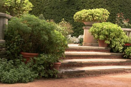 Stappen in het Engels Tuin Stockfoto