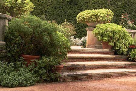 Steps in English Garden