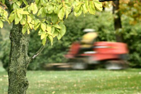 gras maaien: Gras maai machine