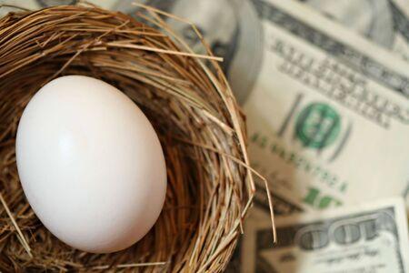 Nest Egg and Money photo
