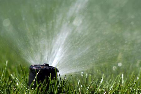 Sprinker hoofd Schieten Water Stockfoto
