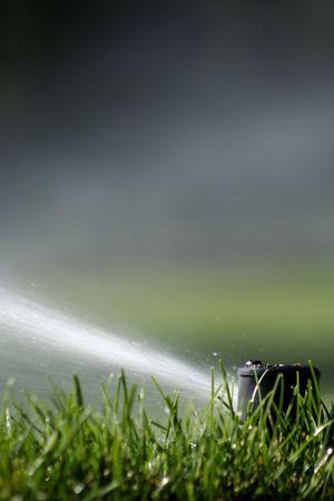 Sprinker Head Shooting Water