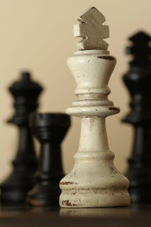 adversaries: White Chess Piece Sepia