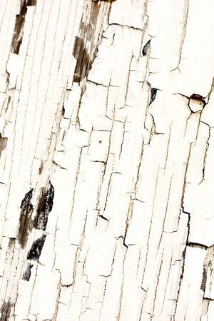 Peeling and cracking white paint on wood Stock Photo