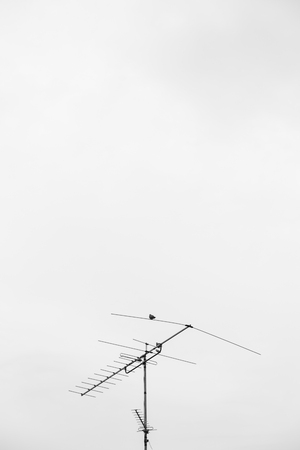 tv antenna: TV Antenna Stock Photo