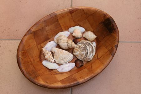table top: table top sea shells in fruit bowl