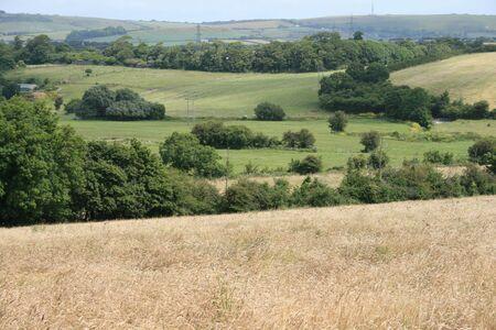 vista: fields vista