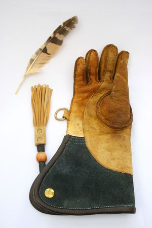 Falconry glove and feather.