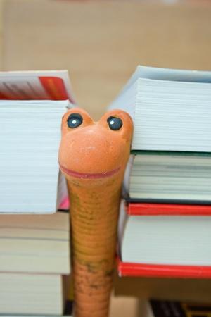 artificial worm between books photo