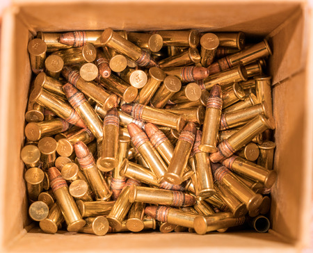 Bullets in Box - Hollow Point Copper Plated Ammunition
