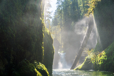 Columbia River Gorge - Hood River, Oregon. Sun shines on Small waterfall and forest stream Stock fotó