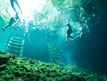 Tourists Snorkeling and Swimming in Gran Cenote - Tulum, Mexico. Underwater Tourism Photo