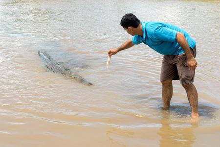 Tour Guide Hand Feeding Large Crocodile on the Tarcoles River, Puntarenas, Jaco / Costa Rica: 10/27/14
