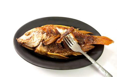 fried fish eclipe dish