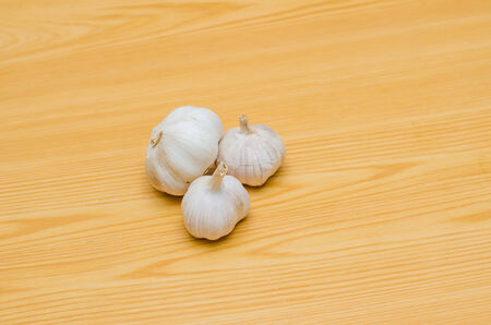 Garlic food ingredient photo