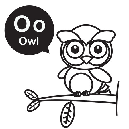 O Owl Animal Cartoon And Alphabet For Children To Learning And Coloring Page  Vector Illustration Eps10