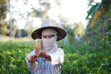 Close up shot farmer using mobile smartphone in the nature farm shallow depth of field with ambient light