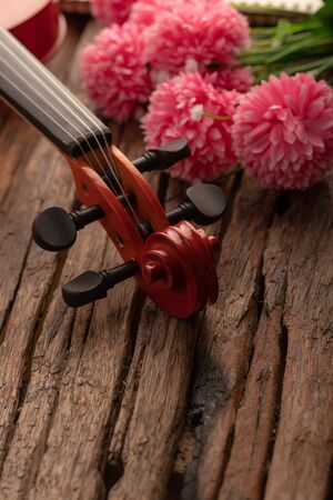 Close-up shot violin headstock orchestra instrumental over wooden background select focus shallow depth of field Stock Photo