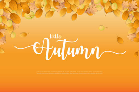 Hello Autumn word and autumn dry leaf falling on a white background, dry of maple leaf, for autumn design element, vector illustration