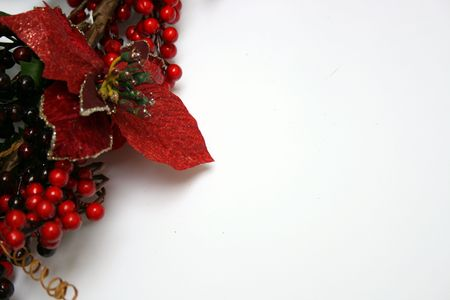 Christmas Greeting card with Red hollies Stock Photo - 3694710