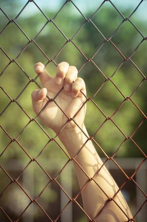 jail: hand in jail. Stock Photo