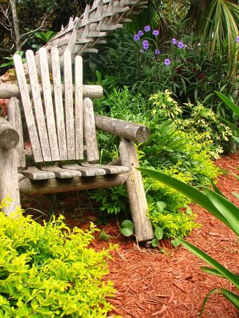 bark mulch: A shot of a wood chair surrounded by folige and palm tree.