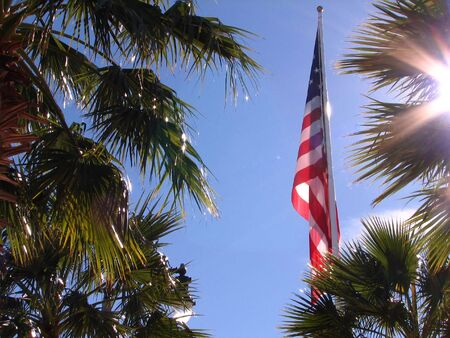 distinguishing: Shot of the American Flag against a beautiful blue sky. Some palm trees are around the flag and the sun is hiding behind one of the palm tree. Stock Photo