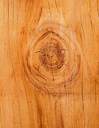 Redwood texture Stock Photo