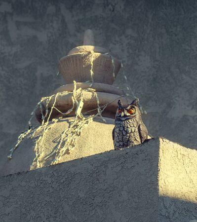 Uluka figurine on the top of Hindu temple. Goddess Lakshmi and Chamunda have Uluka owls as their Vahanas.