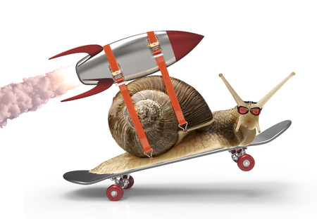 snail in a hurry Stock Photo - 39881829