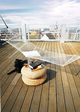 sun roof: hammock on roof with black dog and books