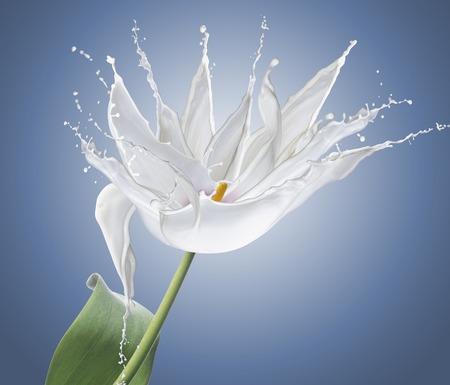 flower made of white splashes isolated on blue.