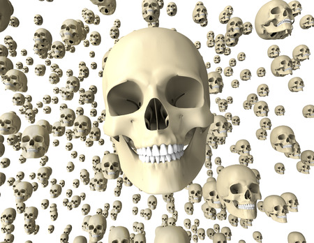withe: withe scull isolated on dark background with clipping path.