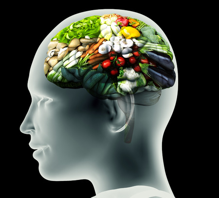 brain illustration: x-ray image of human head with vegetables for a brain.