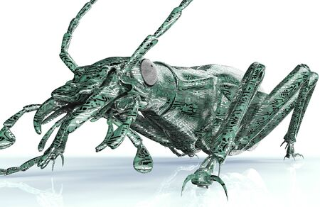 computer bug: digital safety concept, computer bug isolated on white, 3d illustration