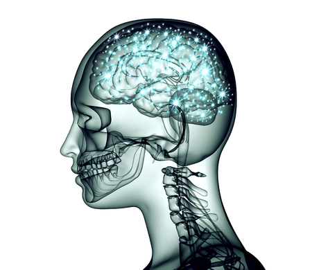 brainwaves: x-ray image of human head with brain and electric pulses, 3d illustration