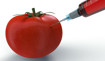 genetic modification: tomato injected with a syringe isolated on white   3d illustration Stock Photo