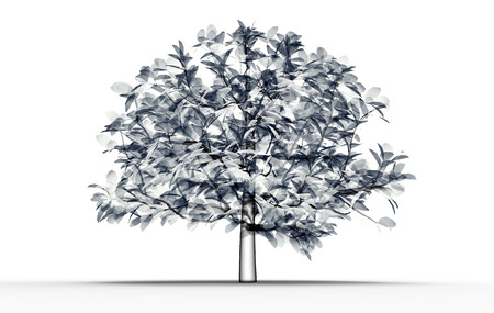 radiogram: x-ray image of a tree  isolated on white , 3d illustration