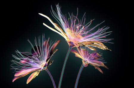 color glass flower isolated on black, the passion flower 3d illustration