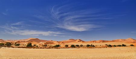 Wüste von Namib mit Orangen-Sanddünen. Standard-Bild - 81864305